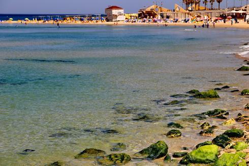 חוף ים בנתניה