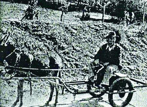 אהרון הר, מבעלי חוות פרדס הגדוד