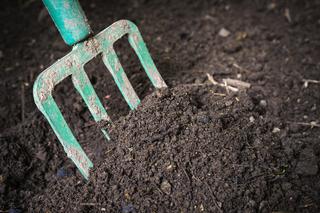 קיינה - חקלאות אורגנית ביולוגית
