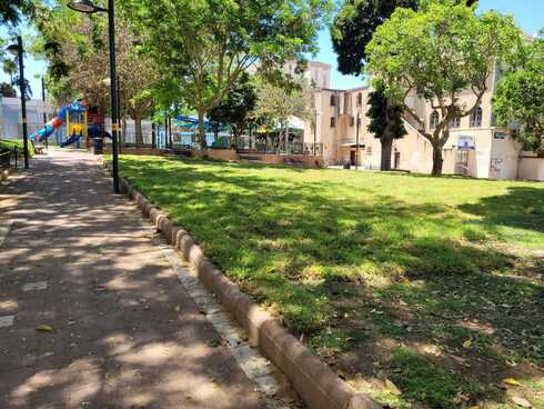 השטח לאחר הסרת בית הכנסת