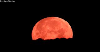 ירח אדום בשמי האזור (צילום: דותן סימון)