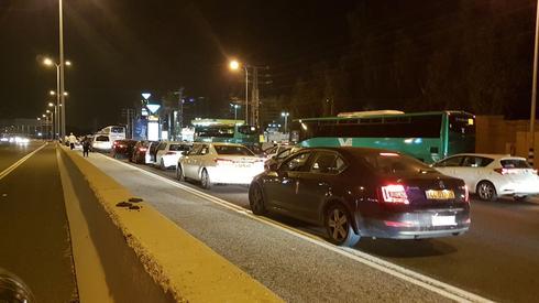 הרכבים בכביש 2 עומדים במקום (צילום: איתמר רותם)