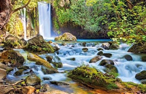 נחל בניאס. העובדת החליקה על האבנים הרטובות | צילום: Shutterstock